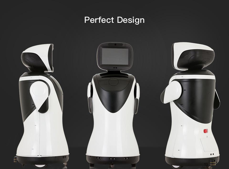 Professional Telepresence Robot Humanoid Design SIFROBOT-4.2 perfect design
