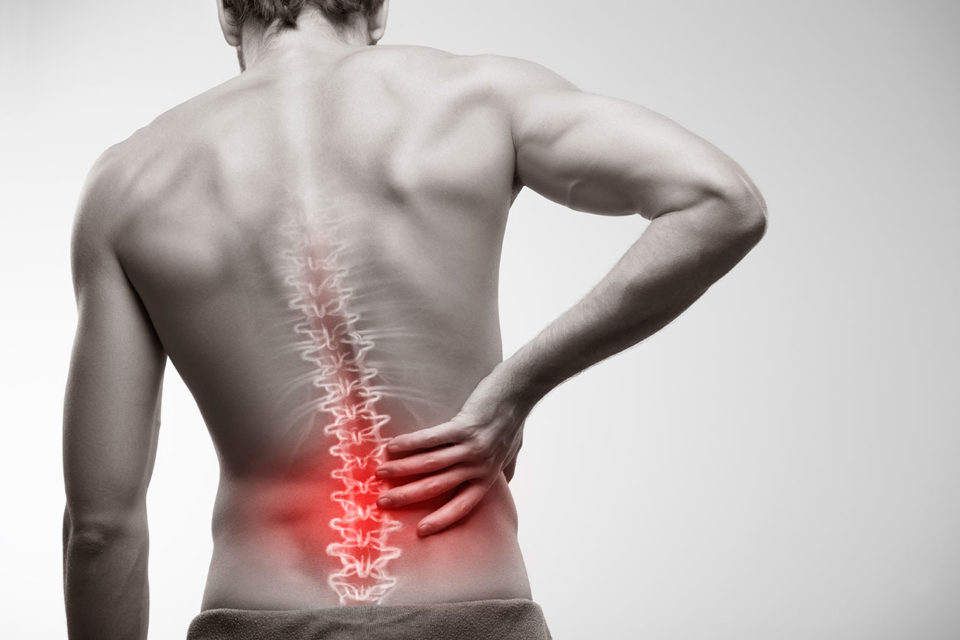 chronic back pain by facet arthropathy