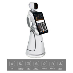Humanoid Intelligent Commercial Service Robot SIFROBOT-5.3 main pic