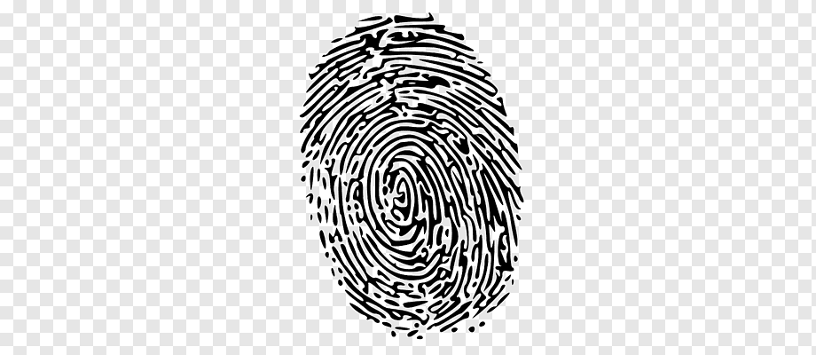 fingerprint time and attendance