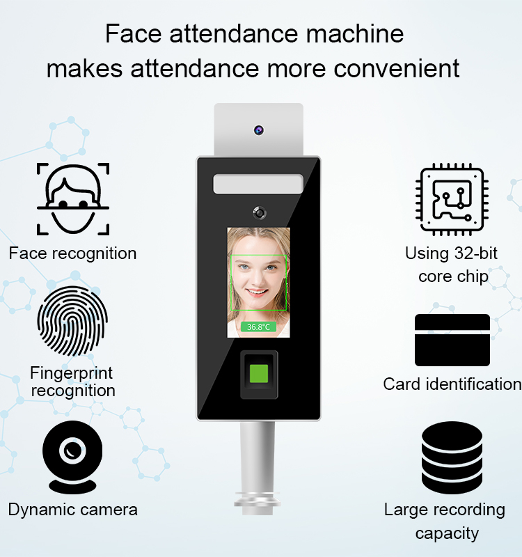 Face recognition and Fingerprint Temperature checker Stand type: SIFROBOT-7.82 face recognition