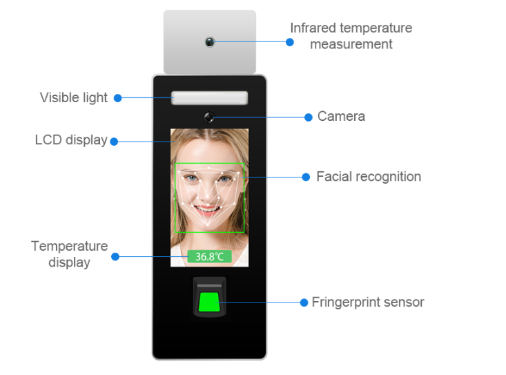 Face recognition and Fingerprint Temperature checker Stand type: SIFROBOT-7.82 info